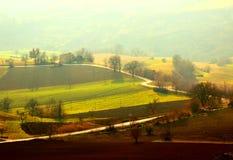 在用雾沐浴在阳光和报道的领域之间的弯曲道路 免版税库存照片