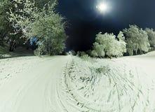 在用霜和雪盖的树的弯曲的路在胜利 免版税库存照片