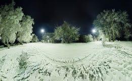 在用霜和雪盖的树的弯曲的路在胜利 免版税图库摄影