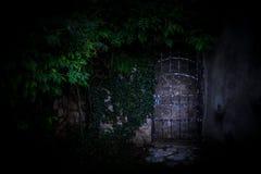在用绿色常春藤盖的墙壁的门 库存图片