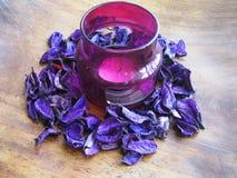 在用紫色海角gooseberr装饰的淡紫色烛台的蜡烛 免版税库存图片