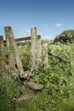 在田园诗sunsh的美好的充满活力的英国乡下风景 免版税库存照片