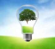 在电电灯泡的树在草原 背景概念eco能源查出的白色 库存图片