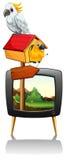 在电视屏幕上的鹦鹉 向量例证