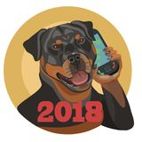 在电话的狗Rottweiler到2018年 库存图片