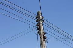 在电钢缆之间的剪影鸟 免版税库存图片