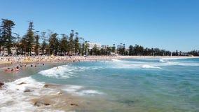 在男子气概的海滩,悉尼,澳大利亚的夏天早晨 影视素材