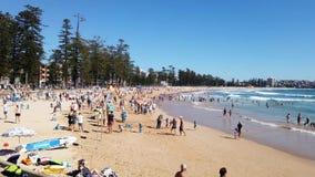在男子气概的海滩,悉尼,澳大利亚的夏天早晨 股票录像