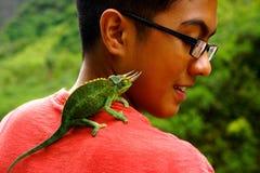 在男孩肩膀的有角的蜥蜴宠物  免版税库存照片