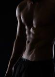 在男性躯干的特写镜头与腹肌 免版税图库摄影