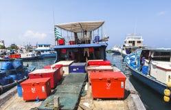 在男性,马尔代夫的捕鱼港口 免版税图库摄影