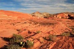 在疯狂的小山的镶边岩石在桃红色峡谷,在日落的火波浪附近,火国家公园,美国谷  免版税图库摄影