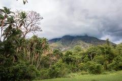 在登上姆兰杰的多云天空有森林的 库存图片