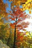 在登上曼斯菲尔德的秋天在佛蒙特 库存照片