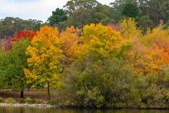 在登上第17个M的崇高南澳洲的秋天秋天颜色 库存图片