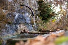 在登上Serva,贝卢诺,白云岩的秋天 免版税图库摄影