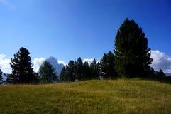 在白云岩的田园诗阿尔卑斯风景 免版税库存照片