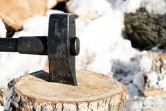 在白扬树树桩木柴,在砍木头工作在冬天 免版税库存照片