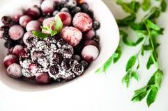 在白方块薄菏板材和buncht的冷冻莓果在白色的 免版税库存图片
