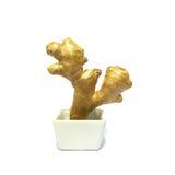 在白方块陶瓷弓的姜根茎 免版税库存图片