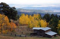 在白杨木中的秋天谷仓 免版税库存照片