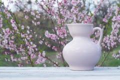 在白板桌上的瓷桃红色水罐以开花的灌木为背景的 免版税库存照片