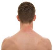 在白的真正的解剖学隔绝的男性脖子 免版税库存图片
