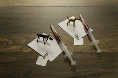 在白皮书的两条式样狗与狂犬病疫苗和两个标签 图库摄影