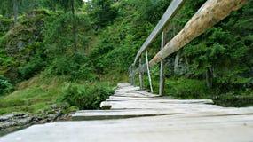 在白羊星座河的老木桥 免版税库存照片
