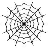 在白色上的蜘蛛网 库存照片