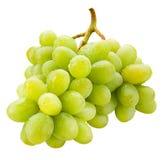 在白色与下落的新鲜的绿色葡萄隔绝的 免版税库存照片