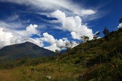 在白色云彩背景的山  库存图片