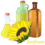 在白色例证隔绝的向日葵油瓶 库存图片