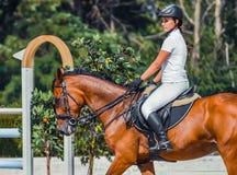 在白色制服的海湾驯马马和美丽的女孩阿拉伯出现在跳跃赛 库存照片