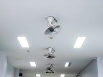 在白色办公室天花板的吊扇 免版税图库摄影
