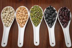 在白色匙子的不同的豆 库存照片