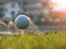 在白色发球区域的高尔夫球在绿色草坪 库存照片