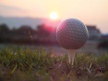 在白色发球区域的高尔夫球在那里绿色草坪是阳光 免版税图库摄影