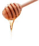 从在白色后面隔绝的一个木蜂蜜浸染工的蜂蜜水滴 免版税库存图片