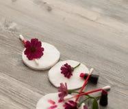 在白色后面, skincare的化妆海绵设置了与化装棉和花在蓝色背景 免版税库存照片