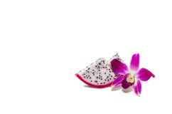 在白色和兰花隔绝的龙果子 图库摄影