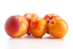 在白色和桃子查出的李子 库存照片
