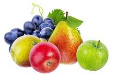 在白色和梨隔绝的葡萄、苹果 库存图片