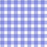 在白色和蓝色纤维无缝的样式格子呢的织品 EPS10 库存图片