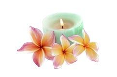 在白色和蜡烛隔绝的羽毛花 免版税库存照片