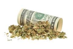 在白色和金钱隔绝的大麻 免版税库存照片