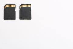 在白色哼声的SD卡片 免版税库存照片