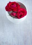 在白色圆的板材的玫瑰 免版税图库摄影