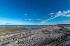 在白色壳盖的一个美丽的海滩在新西兰 免版税库存图片