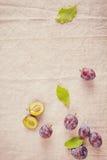 在白色布料隔绝的森林莓果 图库摄影